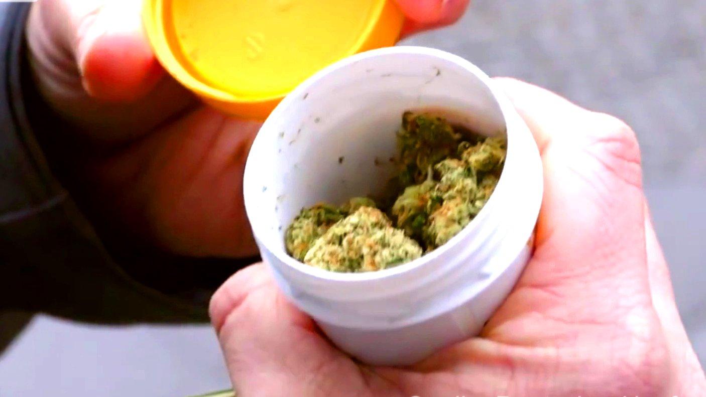 Medizinisches Cannabis aus einer Apotheke.