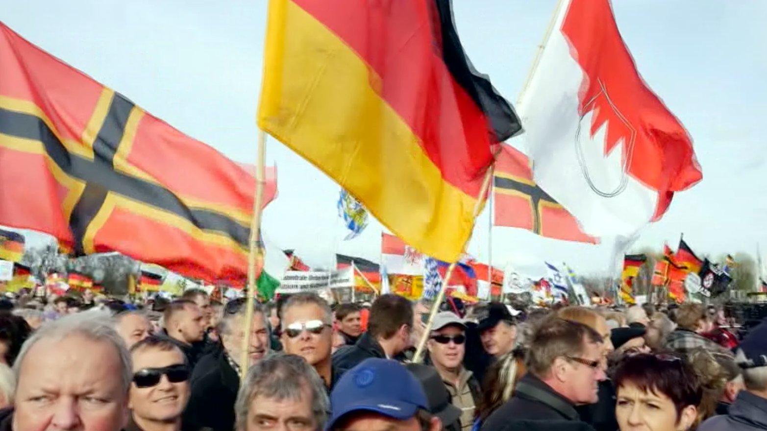 Flaggen auf einer rechten Demonstration, 2016.
