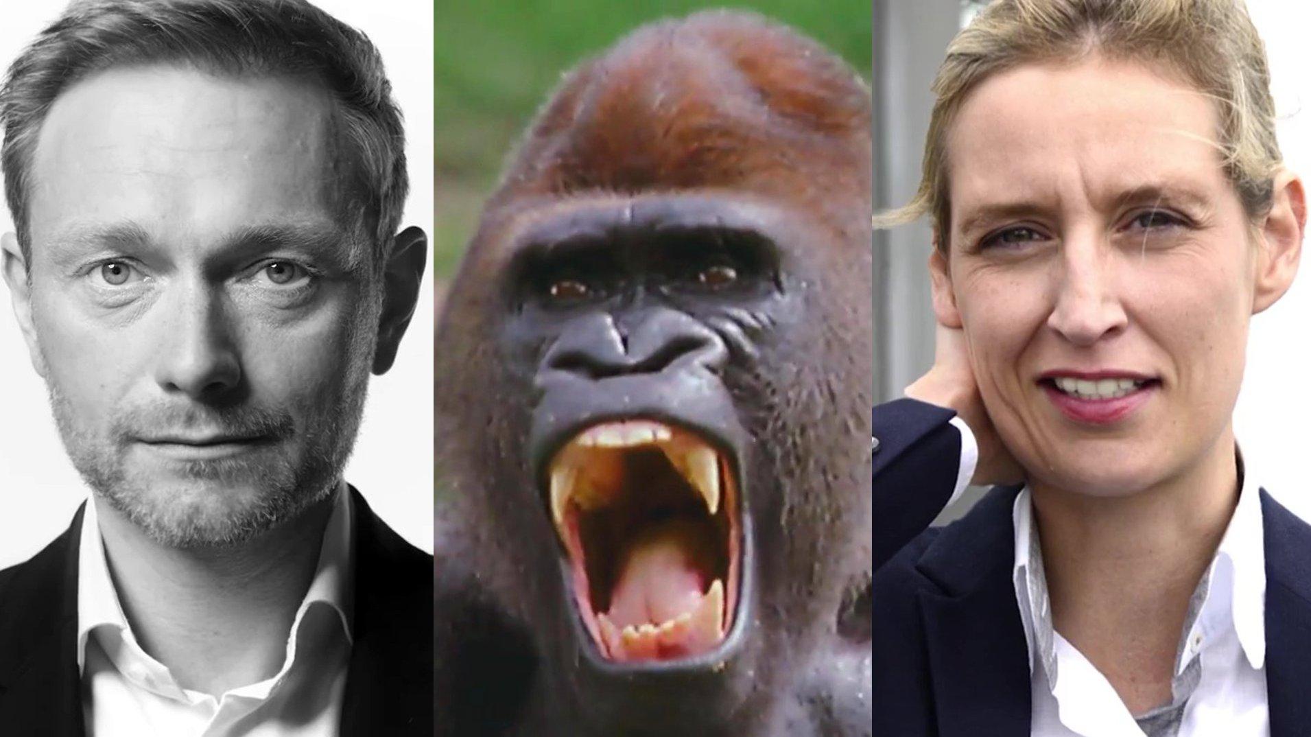 Bundestagswahl 2017: Wer hat den besten Werbespot? Werbefachmann Oskar Valdre analysiert die Videos der Parteien
