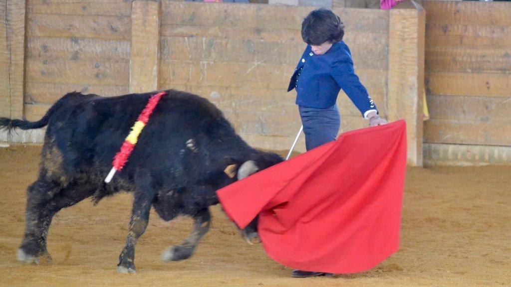 Adios Toreros? Spaniens Streit um den Stierkampf (Doku)