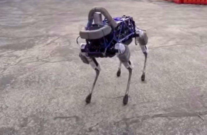 "Der vierbeinige Roboter ""Spot""."