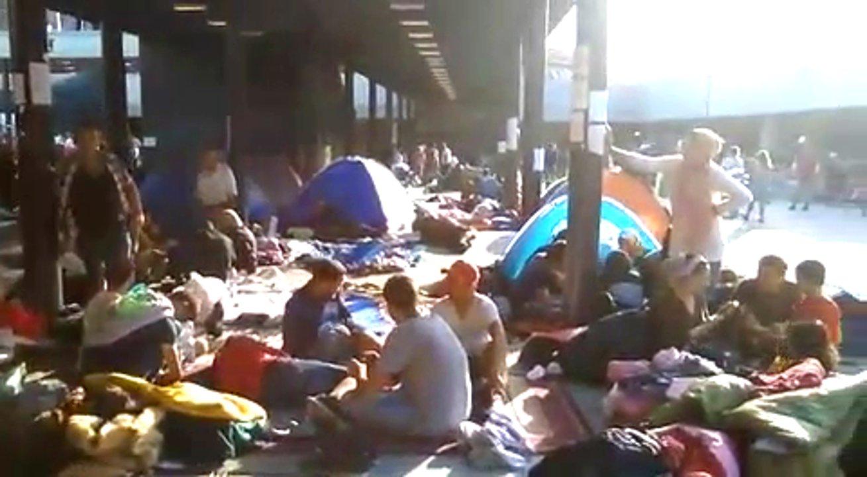 Videotagebuch einer Medizinstudentin aus Budapest, die sich als Freiwillige am Keleti-Bahnhof in Ungarn engagiert