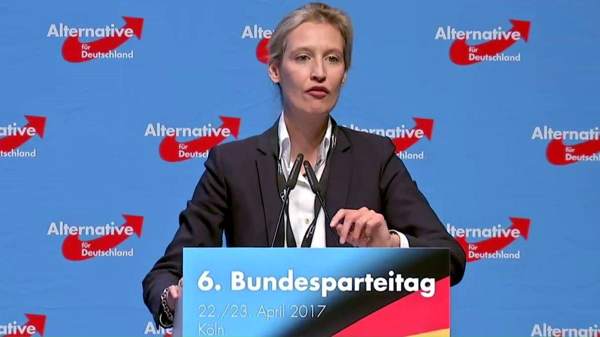 """So denkt Alice Weidel (AfD) über """"Politische Korrektheit"""""""