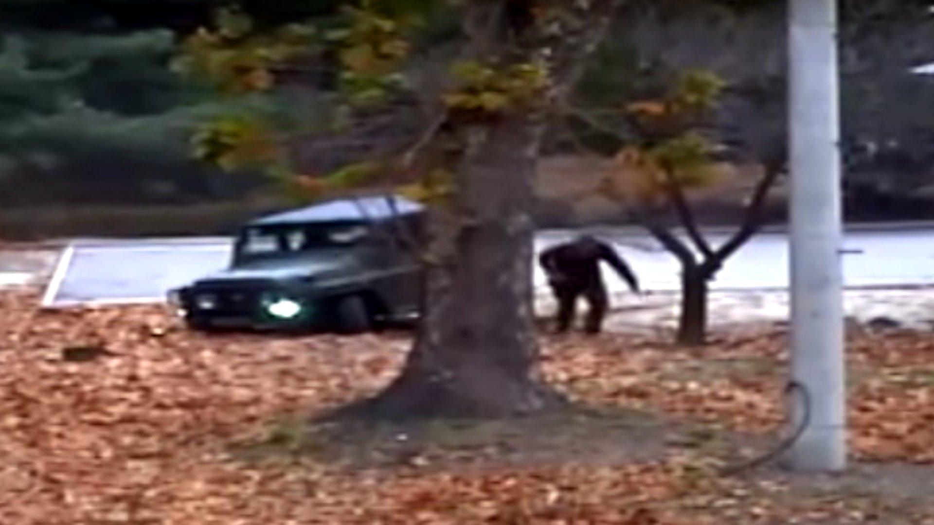 Uno-Video zeigt dramatische Flucht aus Nordkorea