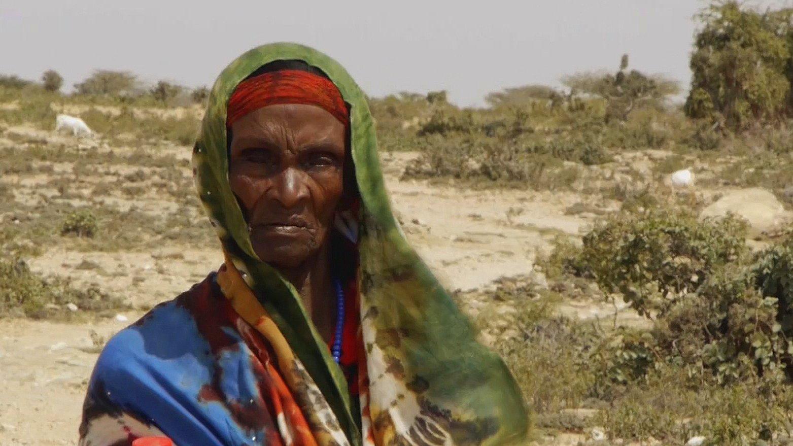Mein Somalia – Zwischen Krieg und Armut