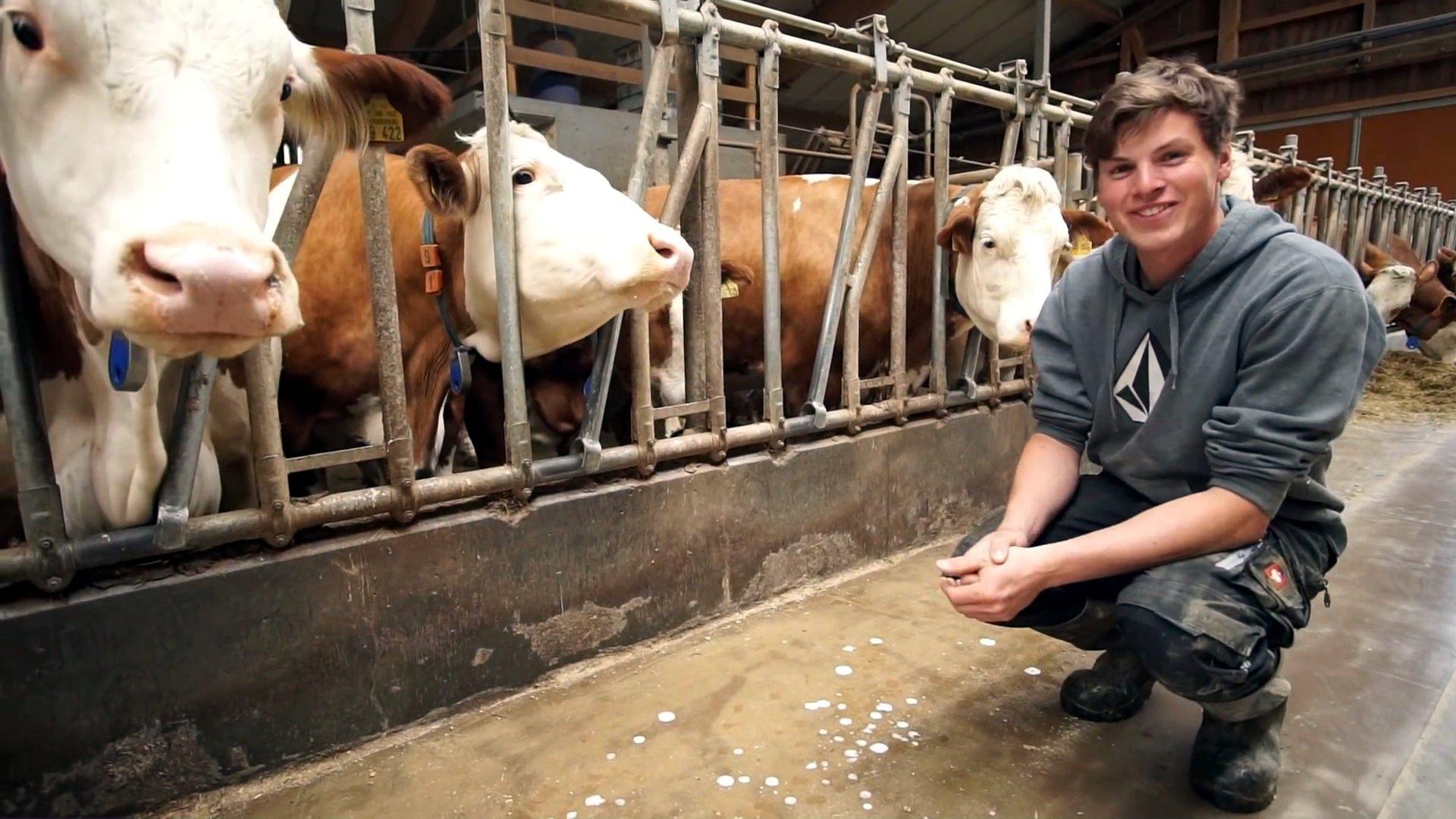 dbate - VTB - Junge Landwirte_Joanthan mit Kühen